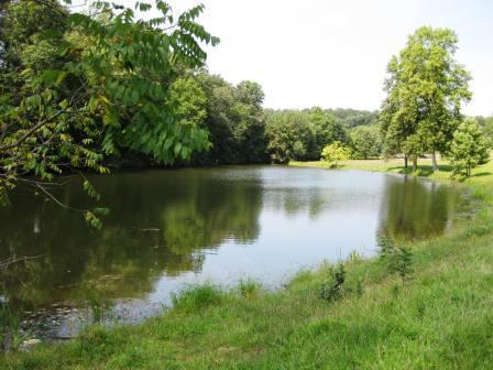 Malvern Pond for zip19355